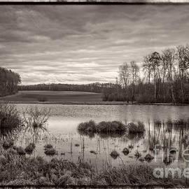 The Seeli-Pond by Bernd Laeschke
