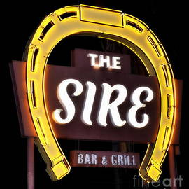 The Sire by Tru Waters