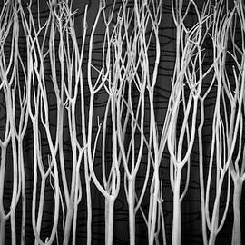The Sticks by Michael Hills