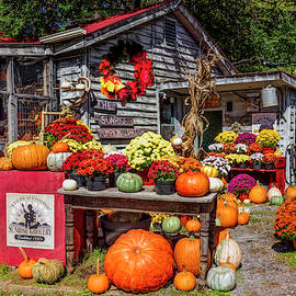 The Sunrise Pumpkin Patch by Debra and Dave Vanderlaan