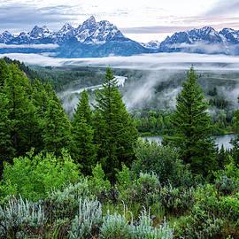 The Tetons On Snake River At Sunrise 2 - Grand Teton National Park Wyoming by Brian Harig