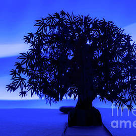 The Tree Of Life by Linda Howes