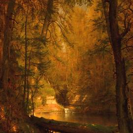 The Trout Pool - 1870 - After The Original Painting By Worthington Whittredge L A S  by Gert J Rheeders