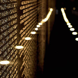 The Vietnam Veterans Memorial by Pete Federico