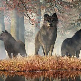 The Wolves Of Autumn by Daniel Eskridge