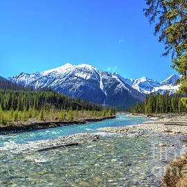 The Wonderful  Vermilion River  by Robert Bales