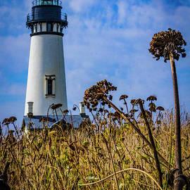 The Yaquina Head Lighthouse - Newport, Oregon by Jeff Kurtz