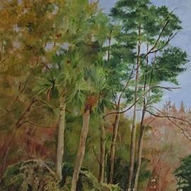Thicket Along Chattam Lane by Barbara Moak