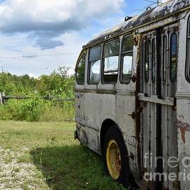 This Old Bus by Brenda Lawlor