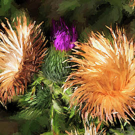 Thistle Abstract by Donna Kennedy