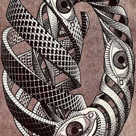 Triple Eye Twist by Douglas Fromm