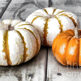 Three More Pumpkins by Elisabeth Lucas