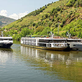 Three Riverboats by Sally Weigand