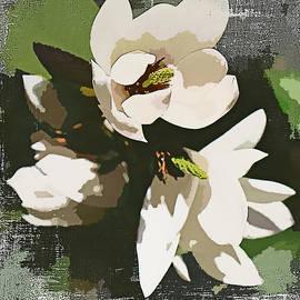 Three White Magnolias by Trudee Hunter