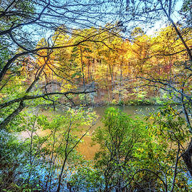 Through The Trees In Autumn by Debra and Dave Vanderlaan