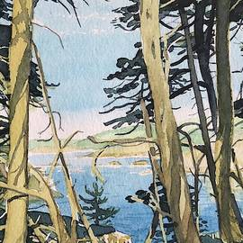 Through the Trees at Point Lobos  by Luisa Millicent