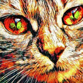 Tiger Eyes by Tina LeCour