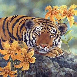 Tiger Lily by Laura Regan