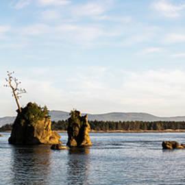 Tillamook Bay Graces by Robert Potts