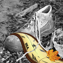 Time for new shoes by Petra Koehler Rose