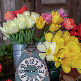 Time For Some Tulips By Tl Wilson Photography by Teresa Wilson