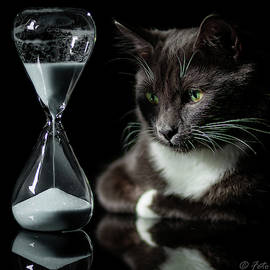 Time Keeper by Alexander Fedin