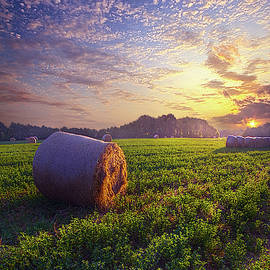 Times of Summer by Phil Koch