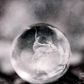 Tiny Dancer by Susan Maxwell Schmidt