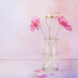 Tiny Poppies by Theresa Tahara