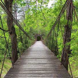 Tishomingo Swinging Bridge by Susan Rissi Tregoning