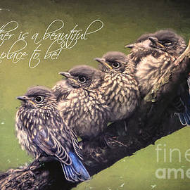 Together Is A Beautiful Place To Be by Tina LeCour