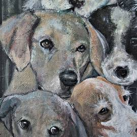 Top Dog by Victoria Glover