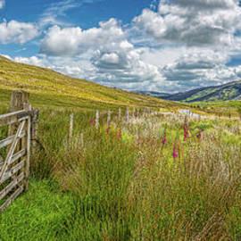 Tourist Route Snowdonia by Adrian Evans