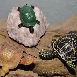 Kae Cheatham - Toy Turtle Confab
