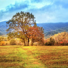 Trail In Autumn At Cades Cove by Debra and Dave Vanderlaan