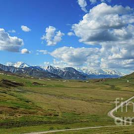 Trail To Denali by Robert Bales