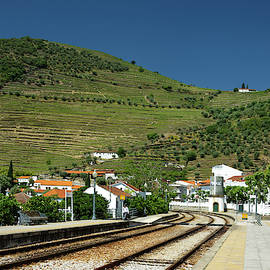 Train Station and Vineyards by Sally Weigand