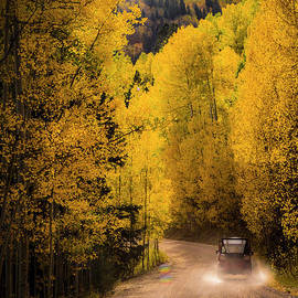Traveling in a Fall Paradise by Brenda Landdeck