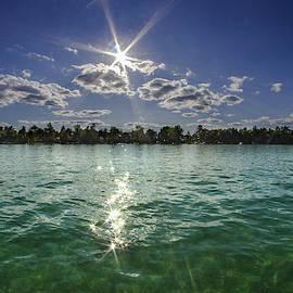 Treasure Island Aqua Day Dream by Ron Wiltse
