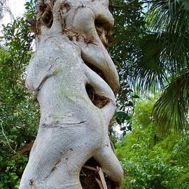Tree monster by AnnaJo Vahle
