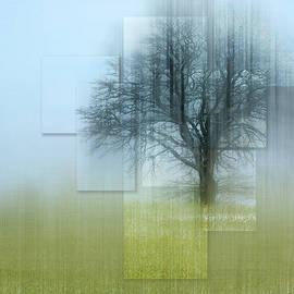 Tree Views by Terry Davis