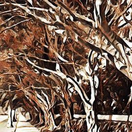 Treelined by Jody Lane
