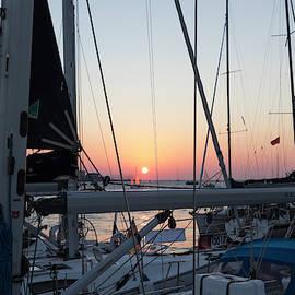 Trieste Sunset by Helga Novelli