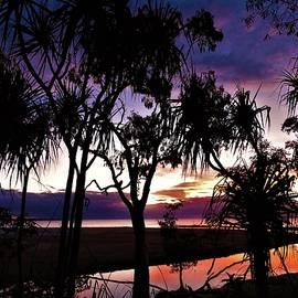 Trunding Creek Silhouette Sunset by Joan Stratton