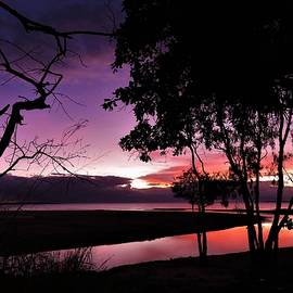 Trunding Creek Weipa Sunset by Joan Stratton