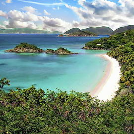 Trunk Bay by Anthony Dezenzio