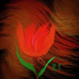 Tulip Fantasy #j3 by Leif Sohlman