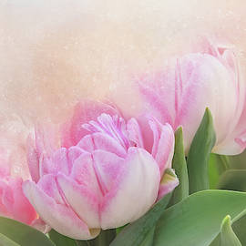Tulips for Mom by Terry Davis