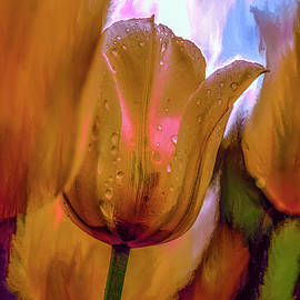 Tulips yellow #i7 by Leif Sohlman