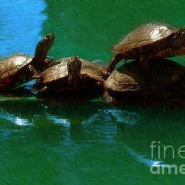 Turtle Family Portrait by Blake Richards